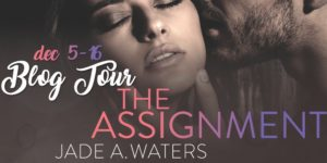 the-assigment-blog-tour